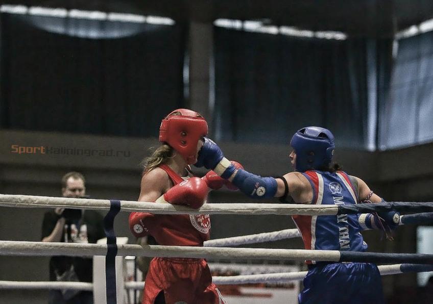 tajskiy-boks-news-sportkaliningrad