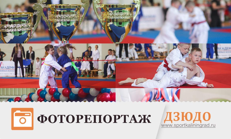 foto-judo-may-2017-sportkaliningrad