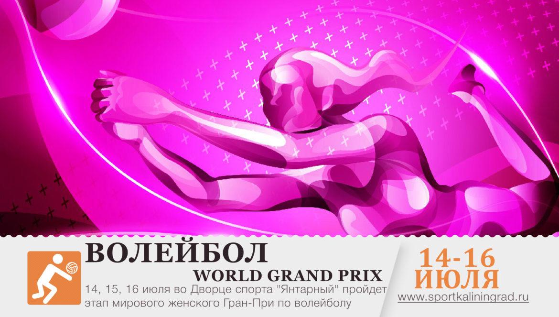 world-grand-prix-14-16-iyulya-kaliningrad-2017-sportkaliningrad