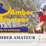 konkur-yantarniy-Amber-amateur-2017-sportkaliningrad