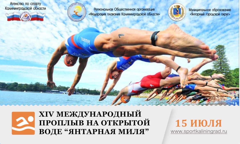 plavanie-yantarnay-milya-kaliningrad-sportkaliningrad